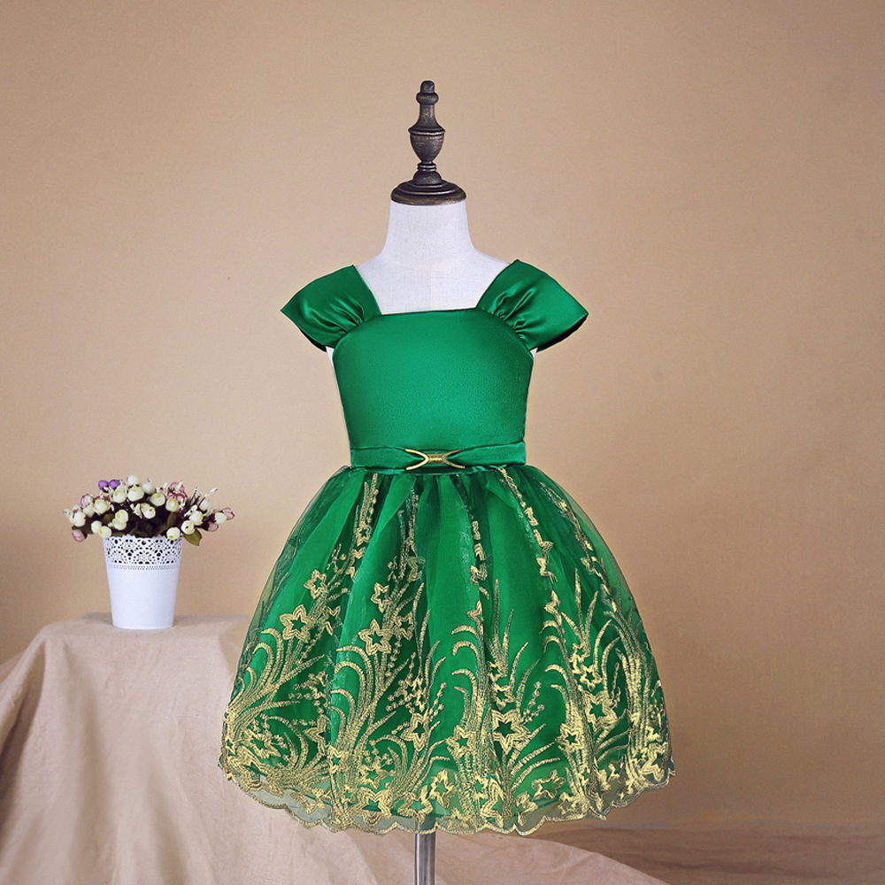 Dressnomore Girls Princess Dress Girls Chiffon Dress Style Floral Embroidery Evening Party Dresses For Girls 2-8y<br>