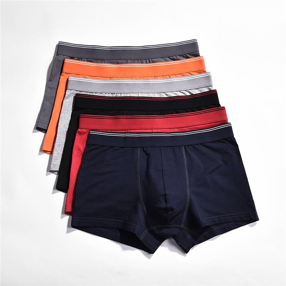 509men underwear boxers 01