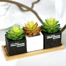 Artificial Flowers Simulation Succulents Ornaments Mini Green Plants Garden Home Wedding Decoration D6 - love myhome store