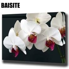 BAISITE DIY Framed Oil Painting By Numbers Flowers Pictures Canvas Painting For Living Room Wall Art Home Decor E789(China)