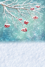 Winter snow New  Photography Backdrop Photo Studio Props Newborn Pets Photography Background cloth D-9311