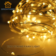 BRIGHTINWD LED Garland Christmas indoor String Lights 10M 33ft 100LEDS Copper Wire Battery Powered Fairy Lights Home Decoration(China)