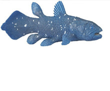 Coelacanth Model Toy Ancient Marine Organisms Model Kindergarten Toys Teaching Aids Simulation Animal Model Kids Gift(China)