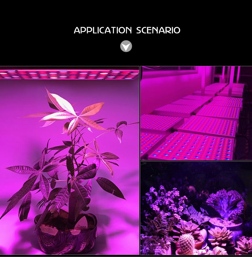 panel led grow light (15)