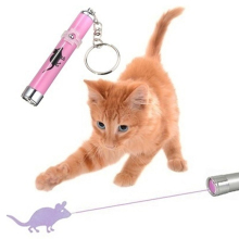 Interactive Funny Cat Toys For Cat Led Pointer Light Pen Bright Animation Mouse Gatos Jouet Chat Pets Cats Products For Pets