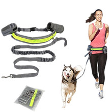 Hands Free Puppy Dog Running Padded Waist Reflective Strip Elastic Leash Jogging Walking Training Pets Supplies Dogs Products(China)