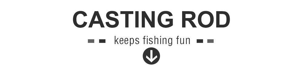 Casting Rod