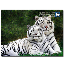 Needlework! 5d diy Diamond painting embroidery mosaic tiger picture of rhinestones patchwork knitting needles beadwork stitching