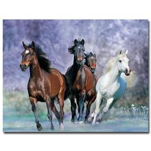 NICOLESHENTING Wild Horse At Beach Nature Art Silk Poster Print 13x18 24x32 inches Animals Picture Home Room Decor 026