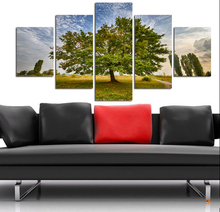 5 Pieces Wall Art setting sun Sunshine HD Picture Home Decoration Canvas Print Green Tree Grassland Scenery Paintings