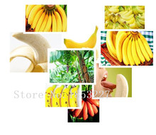 Big sale Banana  seeds, fruit  seeds, edible come - 100particles