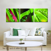 Morning Landscape Raindrop on Green Leaves Canvas Art Prints Home Wall Art High Definition Print on Waterproof Canvas(China)