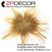 ZPDECOR 50pcs/lot 10-12cm(4-5 inch) Premium Quality Decolor Rare Dyed Light Brown Trimmed Peacock Tail Feather Eye Plumage