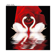 Diamond painting Cross stitch Diy Diamond embroidery Red Rose Swan Couples round drill Diamond mosaic pasted Needlework AA182