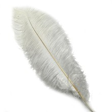Fashion 10PCS White Ostrich Feather 20-25 cm Wedding Decoration Plumage Accessories Crafts Beautiful