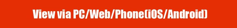 view via PC Web Phone(GDN)