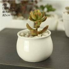 (3 pieces a lot)New simple small white ceramic pots