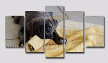 Unfamed 5 Pieces Cute Frrnch Bulldog poster living room Background cuadros Canvas modular Painting Photos Dog Lovers Top Fashion