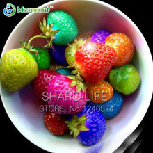 50PCS Rainbow Strawberry Fruit Seeds Multicolor Rainbow Strawberry Fruit Seeds Courtyard and Garden Green Fruits and Vegetables