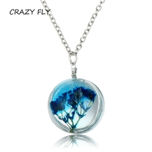 CRAZY FLY Antique Fashion Pu Gong Ying Pendant Vintage Silver Color Chain Necklace In Jewelry Classic Glass Cabochon Necklace(China)