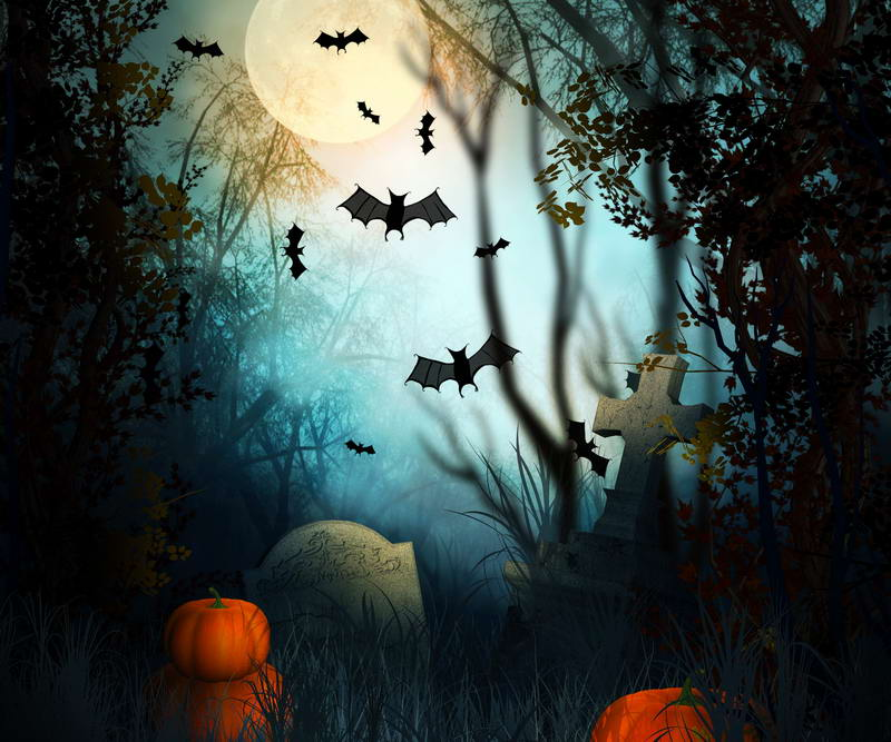 8X8ft vinyl photography background  Computer Latest Halloween night  Photography backdrops for Photo studio HA-084<br>