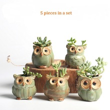 5pc/set Cartoon Owl-shaped Flower Pot for Succulents Fleshy Plants Flowerpot Ceramic Small Mini Home/Garden/Office Decoration