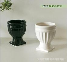 Small black and white ceramic pots pots fleshy succulents selected small pots