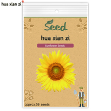 Sunflower Seeds Bonsai Flower Sunflower Seed Natural Growth for Home Garden Planting 50 seeds/bag