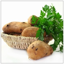 Hot Selling Garden 100 pcs/Bag Vegetable Seeds for Home Garden 100% Natrual Organic Potato Sementes Outdoor DIY Planting