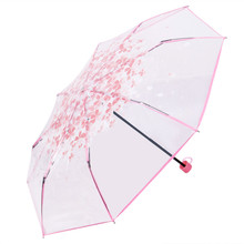 Indie Pop Style Transparent Clear Umbrella Cherry Blossom Folded Umbrella Mushroom Apollo Sakura 3 Fold Umbrella Pink Green Blue
