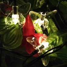 Multi-color Solar Lamps 4.8M 20LEDs Butterfly Garland Fairy Luces Waterproof Christmas Outdoor Garden Solar LED Decoration Light