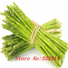 Sale!Free Shipping 100 Mary Washington Asparagus Seeds --the healthiest vegetable seeds ,delicious nutritious perennial plant