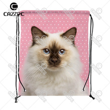 cute cat pink dot Print Custom individual Nylon Fabric Drawstring Shoes Storage Dust Bag Pack of 4()