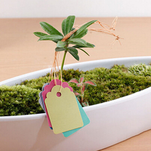 3.6 x 2.5cm 100pcs Waterproof Strip Line Garden Labels Signs Plant Hanging Tags Cute Mini Plant Seed Labels