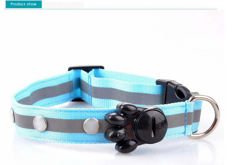 dog collar for small dogs (11)