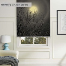 MOMO Scenic Window Curtains Roller Shades Blinds Thermal Insulated Blackout Fabric Custom Size, PRB set174-178