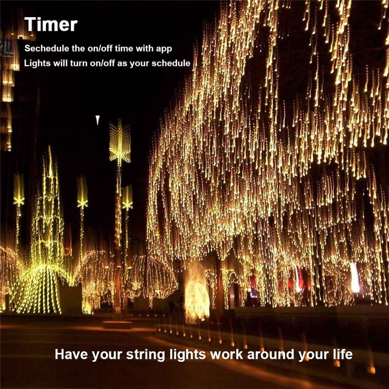 Dimmable LED Christmas Lights (8)
