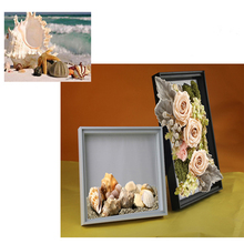 Plastic Glass Photo Frames Nice Plant Specimen Clamp Handicraft Display Frames Picture Frame Home Store Decoration