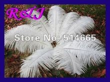 Wholesale 20PCS 20-22inch 50-55cm white OSTRICH FEATHER real ostrich drab feathers EMS Free Shipping(China)