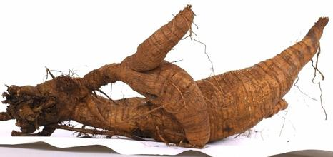 1kg 10:1 Pueraria Extract Kudzu Root Extract powder<br><br>Aliexpress