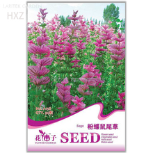 Pink Butterfly Sage Flowers seeds, Original Package, 50 seeds, strong aroma ornamental flowers aromatic A158