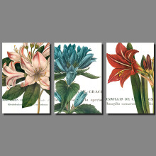 Pink Red Blue Flowers lily Daffodils Picture decoration Canvas Painting wall Art plants print living room home decor unframed