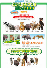 Japan original genuine wild farm pets animal baby bengal tiger hippo deer boar bear babe piggy collectible figures children