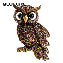 Blucome Vintage Owl Brooch Corsage Scarf Clip Crystal Parrots Brooches Lapel Pin Broches Jewelry Women Lady Sweater Hats Buckles(China)