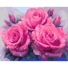 Fashion art flower pictures diy painting by numbers hand painted canvas painting coloring pictures by numbers Pink rose RS134