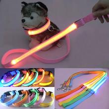 Accessories Dog Collar Leash Set, Pets Safety Leash Rope, Flashing Lighting Led Necklace Collar For Dog(China)