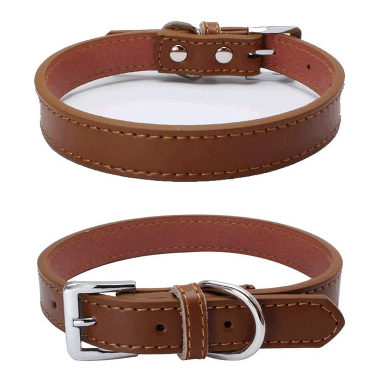 Dog Collars (4)