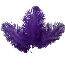 Hot Sale 10PCS Ostrich Feather 15-20 cm Wedding Decoration Party Plumage Decorative Celebration Purple Free Shipping