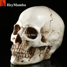 Resin Human Skull Skeleton Bones Statue Figurine Human Shaped Skeleton Head Model Halloween Decor Art Props