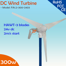 300W 24V DC only 2m/s small start wind speed wind turbine generator with built-in controller  module
